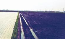 有機資源循環型農業で生きる【宮城編】~せがれぶろぐ~
